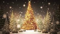 Diner du 25 decembre, le soir de Noel au Petit Prince de Paris