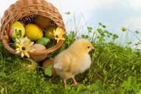 Joyeuses Pâques à vous chères Petites Princesses et Petits Princes  !