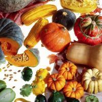 L'Eté indien... des couleurs, des saveurs, de la gourmandise dans vos assiettes